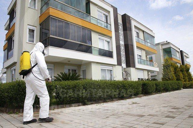 провести дезинфекцию квартиры сколько стоит