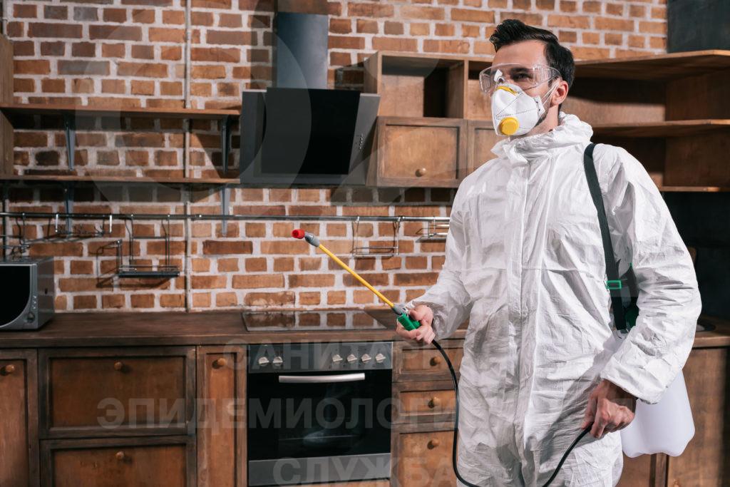 дезинфекционная очистка кухни